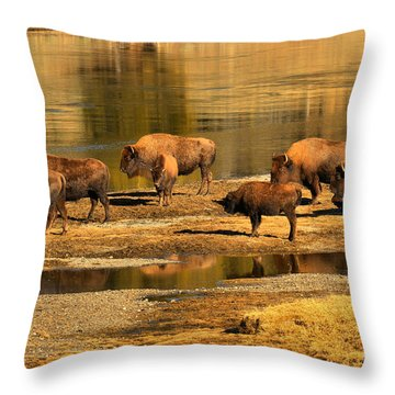 Throw Pillow featuring the photograph Gathering To Cross The Yellowstone River by Adam Jewell