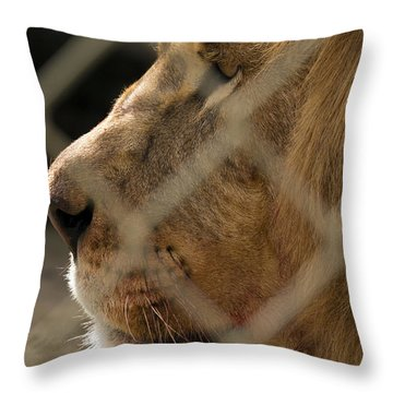 Profile Of A King Throw Pillow