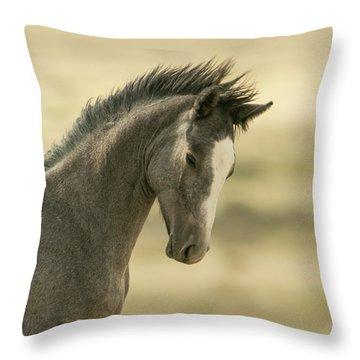 Proud Colt Throw Pillow