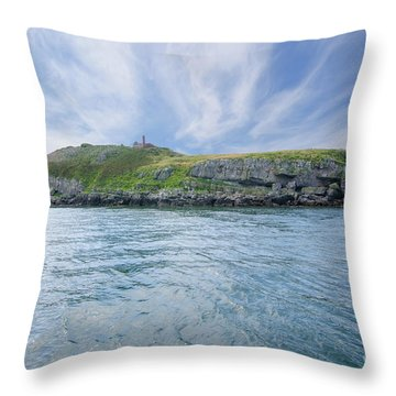 Puffin Island Throw Pillow by Steev Stamford