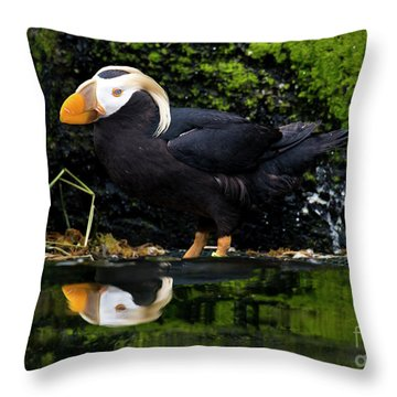Puffin Reflected Throw Pillow