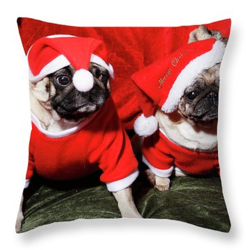 Pugs Dressed As Father Christmas Throw Pillow