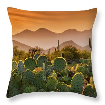 Pure Sonoran Gold  Throw Pillow