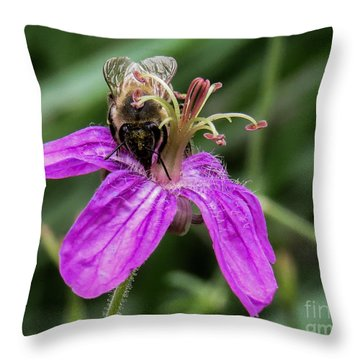 Purple Flower 3 Throw Pillow