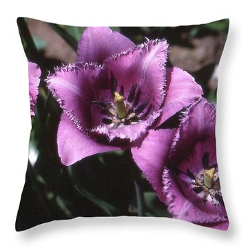 Purple Flowers Two  Throw Pillow by Lyle Crump