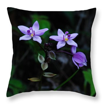 Purple Orchids 2 Throw Pillow by Michael Peychich