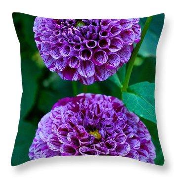 Purple Passion Dahlia  Throw Pillow