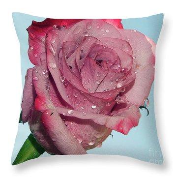 Throw Pillow featuring the photograph Purple Rose by Elvira Ladocki
