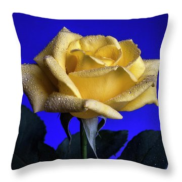 Queenly Throw Pillow