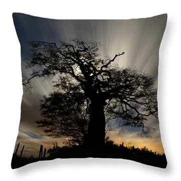Raddon Top Throw Pillow