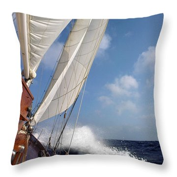 Rail Down Throw Pillow