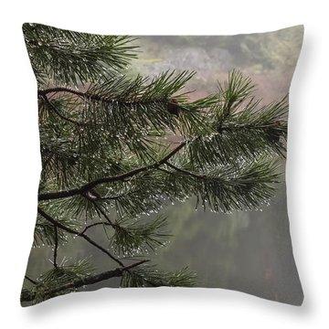 Rain Drops Throw Pillow