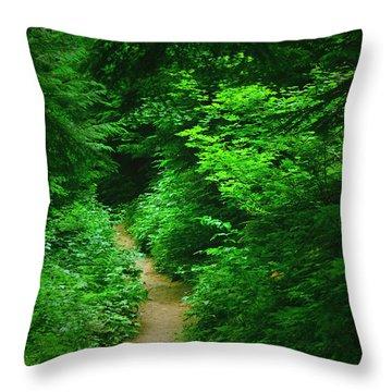 Rain Forest Walk Throw Pillow