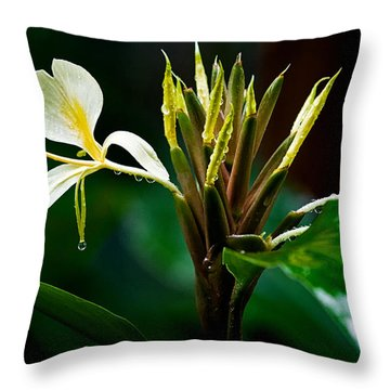 Rain Refreshed Throw Pillow by Christopher Holmes