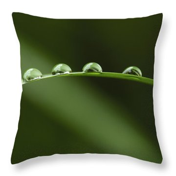 Raindrops Throw Pillow by Silke Magino