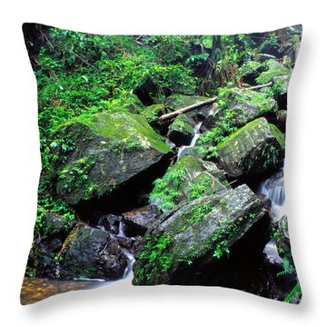 Rainforest Waterfall Throw Pillow by Thomas R Fletcher