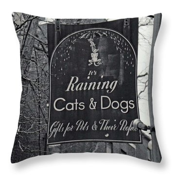 Throw Pillow featuring the photograph Raining Cats And Dogs by Juls Adams