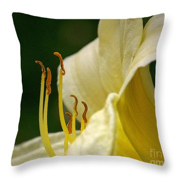 Ready To March Throw Pillow by Sue Stefanowicz