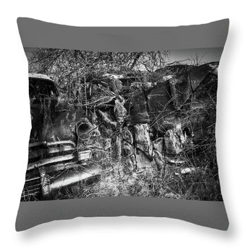 Throw Pillow featuring the photograph Reclamation by Jim Vance