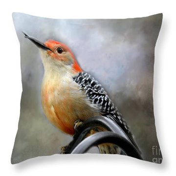 Red-bellied Woodpecker Throw Pillow by Brenda Bostic