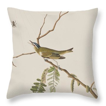 Red Eyed Vireo Throw Pillow by John James Audubon
