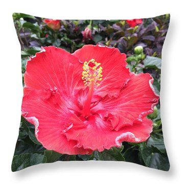 Throw Pillow featuring the photograph Red Hibiscus by Kay Gilley
