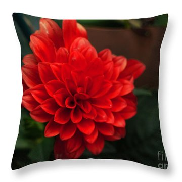Red Throw Pillow by Nancie DeMellia
