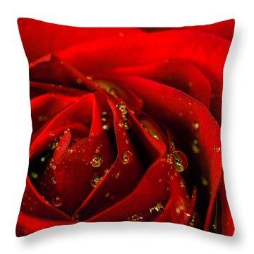 Red Rose 2 Throw Pillow