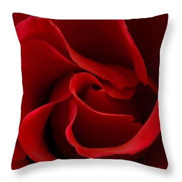 Red Rose Vi Throw Pillow
