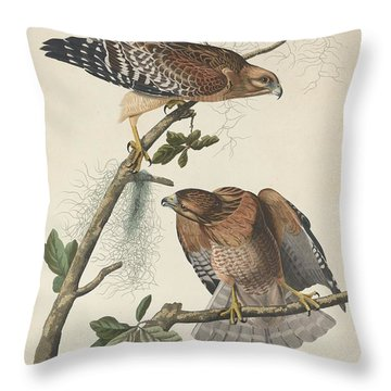 Red Shouldered Hawk Throw Pillow by Anton Oreshkin