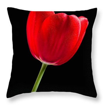 Red Tulip No. 1  - By Flower Photographer David Perry Lawrence Throw Pillow by David Perry Lawrence