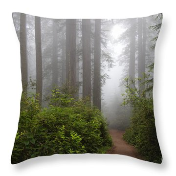 Redwood Grove Throw Pillow