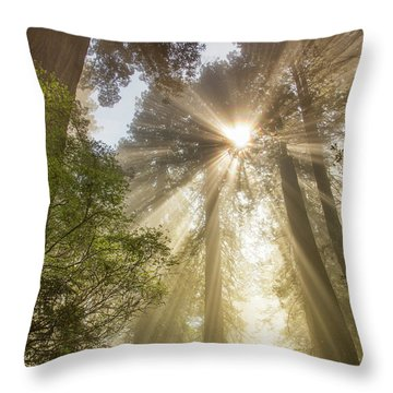 Redwoods Sunburst Throw Pillow