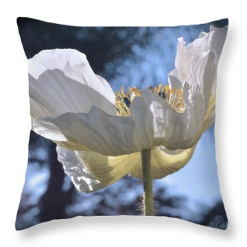 Reflection Yellow On White Throw Pillow by Debby Pueschel