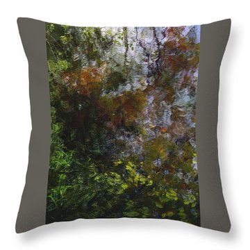 Throw Pillow featuring the photograph Reflections  by Jim Vance