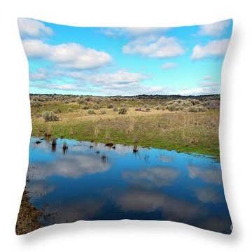 Throw Pillow featuring the photograph Reflections Of Spring by Mike Dawson