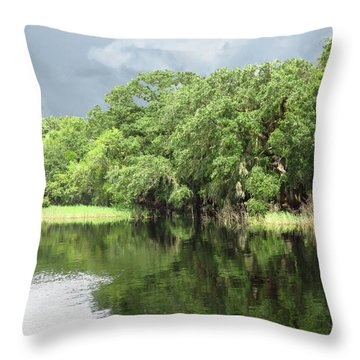 Throw Pillow featuring the photograph Reflections by Rosalie Scanlon