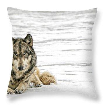 Relaxed Throw Pillow by Shari Jardina