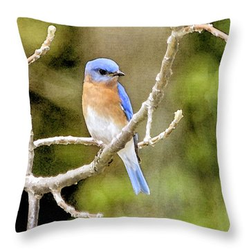 Throw Pillow featuring the photograph Rhapsody In Blue by Betty LaRue