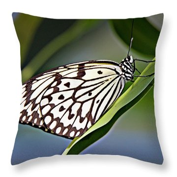 Rice Paper Butterfly 8 Throw Pillow