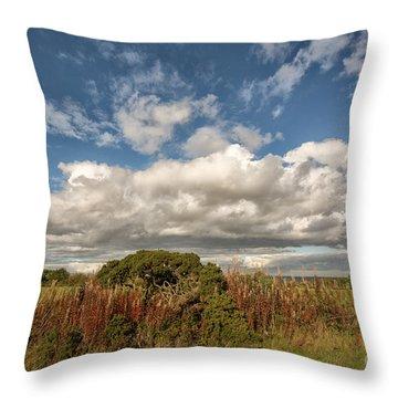 Richmond Racecourse Throw Pillow
