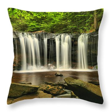 Ricketts Glen Oneida Falls Throw Pillow