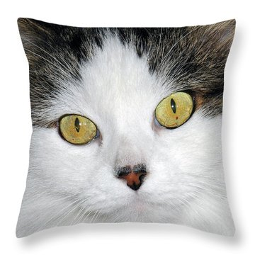 Ridley Throw Pillow