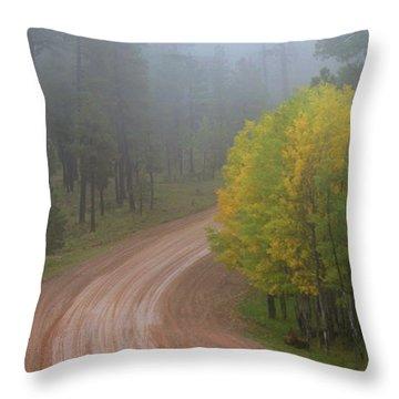 Rim Road Throw Pillow