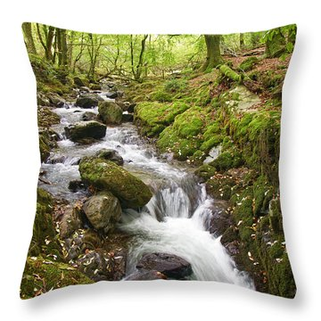 River Lyd On Dartmoor Throw Pillow