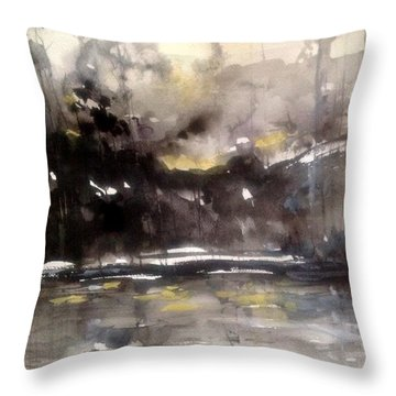 Rivers Of Light Series  Throw Pillow by Robin Miller-Bookhout