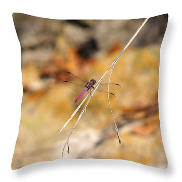 Throw Pillow featuring the photograph Fuchsia Fly by Al Powell Photography USA