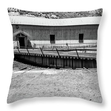 Throw Pillow featuring the photograph Round And Round by Colleen Coccia