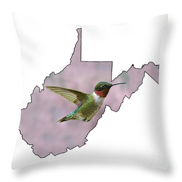 Ruby-throated Hummingbird  Beautiful Coloring Throw Pillow