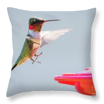 Throw Pillow featuring the photograph Ruby-throated Hummingbird  by Ricky L Jones